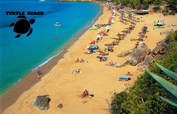 Διακοπές στη ζακυνθο: από 490€ για 8