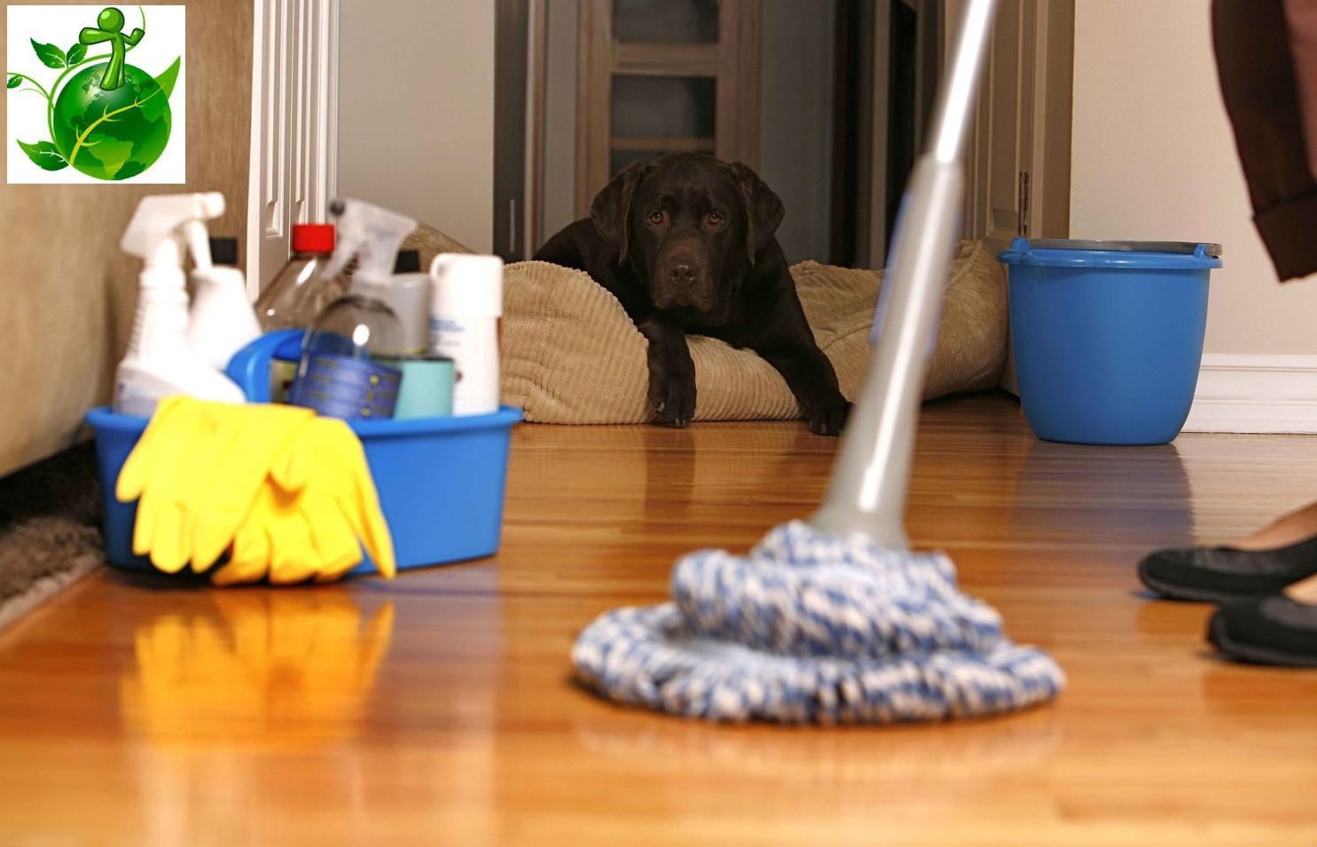 Απο 35€ για Γενικο Επαγγελματικο Καθαρισμο οικιας, απο 3 ατομα, απο την Clean Factor, με εξυπηρετηση σε ολη την Αττικη