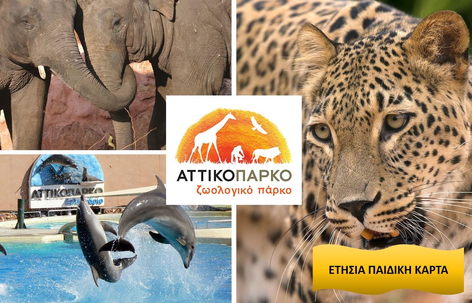 31€ από 39€ για Ετήσια Παιδική Κάρτα (συμπεριλαμβάνεται η εκπαιδευτική παρουσίαση των δελφινιών), στο ''Αττικό Ζωολογικό Πάρκο'' στα Σπάτα εικόνα