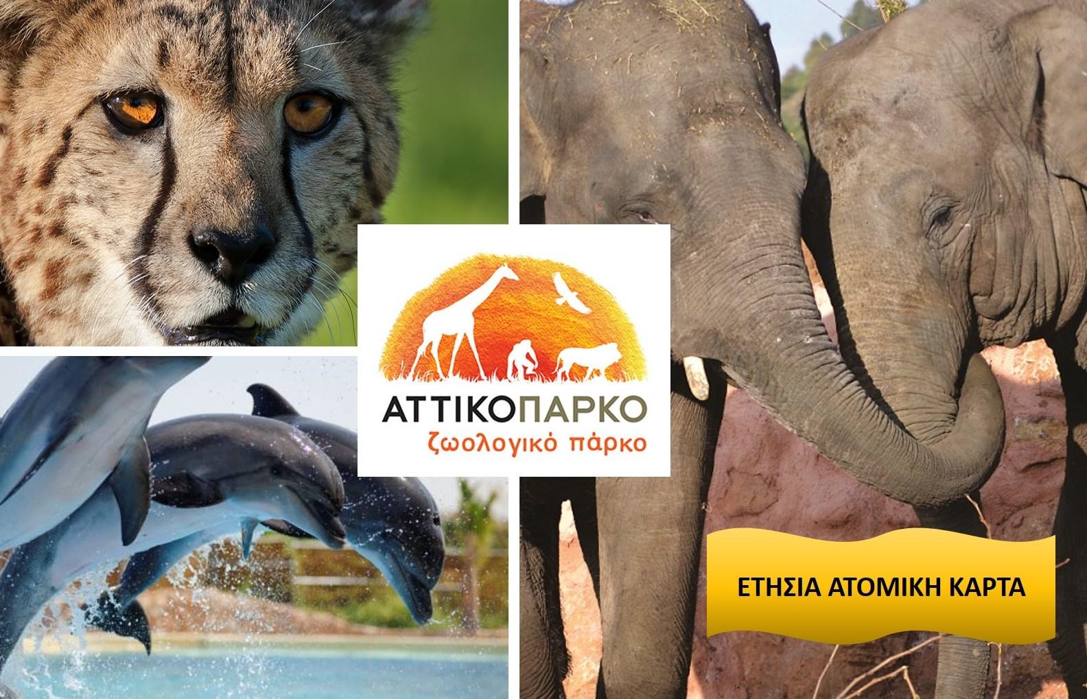 40€ από 49€ για Ετήσια Κάρτα Eνηλίκων (συμπεριλαμβάνεται η εκπαιδευτική παρουσίαση των δελφινιών), στο ''Αττικό Ζωολογικό Πάρκο'' στα Σπάτα εικόνα