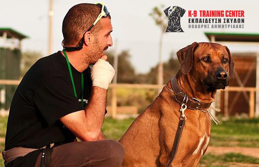 315€ από 521€ για Εκπαίδευση Σκύλου - Mικρό Πρόγραμμα Υπακοής (12 μαθήματα + 2 μήνες συντήρηση), στο εκπαιδευτήριο σκύλων ''K9 Training Center'' στην Παιανία