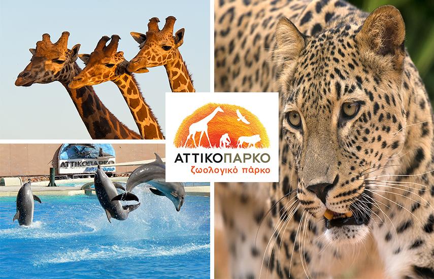Αττικό Ζωολογικό Πάρκο: 6 Μοναδικές Προσφορές για όλη την οικογένεια (Απλή ή Οικογενειακή Είσοδος / Ετήσια Κάρτα) στο μεγαλύτερο πάρκο της Χώρας