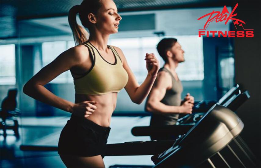 99€ από 299€ για 10μηνη Συνδρομή με ΔΩΡΟ +3 Μήνες & TRX, Cross Training, KIMAX, Pilates Props, στο ''Peak Fitness'' στο Παλαιό Φάληρο το Μεγαλύτερο Γυμναστήριο στα Νότια Προάστια! εικόνα
