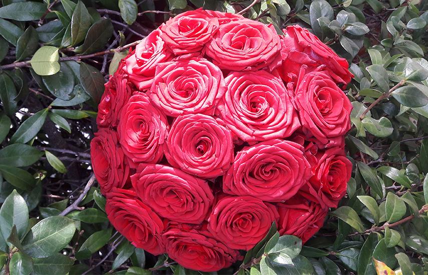 Από 15€ για πλούσιο Μπουκέτο Ολόφρεσκων Λουλουδιών, επιλογή από 5 προτάσεις, με Δωρεάν παράδοση στο χώρο σας, από τους ''Ανθοστολισμούς Κ. Σπυρόπουλος''