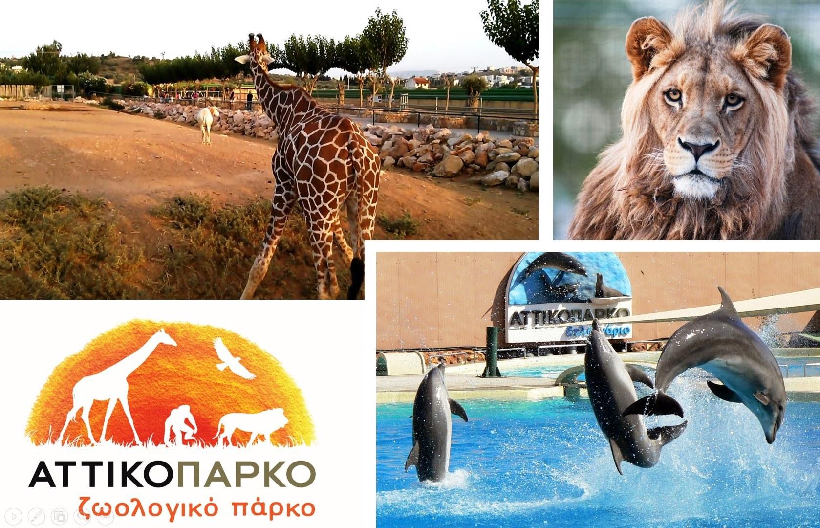 Αττικό Ζωολογικό Πάρκο: 6 Μοναδικές Προσφορές για όλη την οικογένεια (Απλή ή Οικογενειακή Είσοδος / Ετήσια Κάρτα) στο μεγαλύτερο πάρκο της Χώρας εικόνα