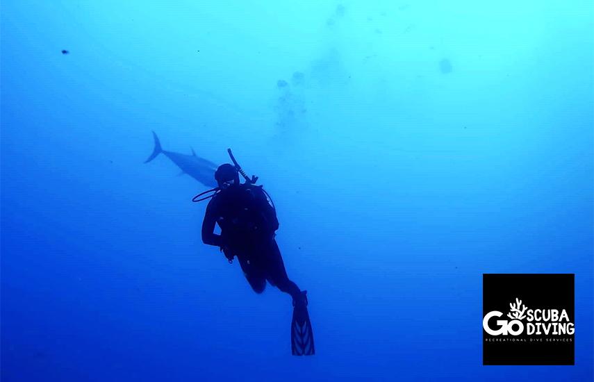 35€ από 60€ για 3ωρο Ολοκληρωμένο Πρόγραμμα Scuba Diving με Θεωρία, Ασκήσεις & Κατάδυση σε βάθος 10m, από το