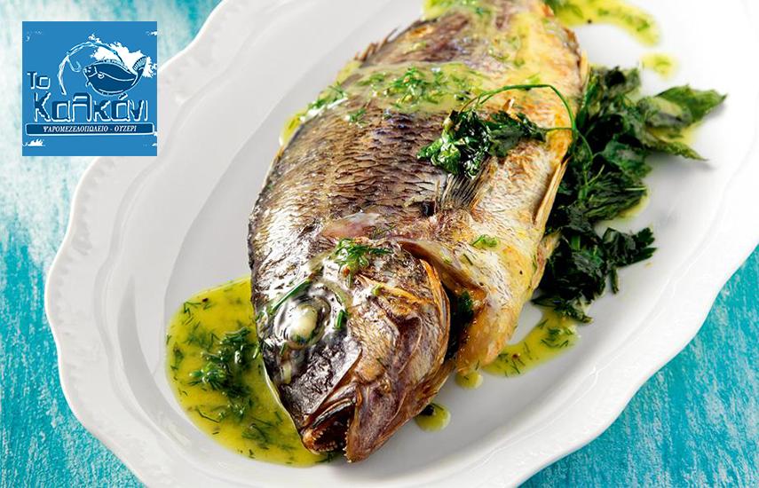 12€ από 24€ για menu 2 ατόμων, ελεύθερη επιλογή, στο ολοκαίνουργιο ψαρομεζεδοπωλείο ''Το Καλκάνι'' στην Μιχαλακοπούλου