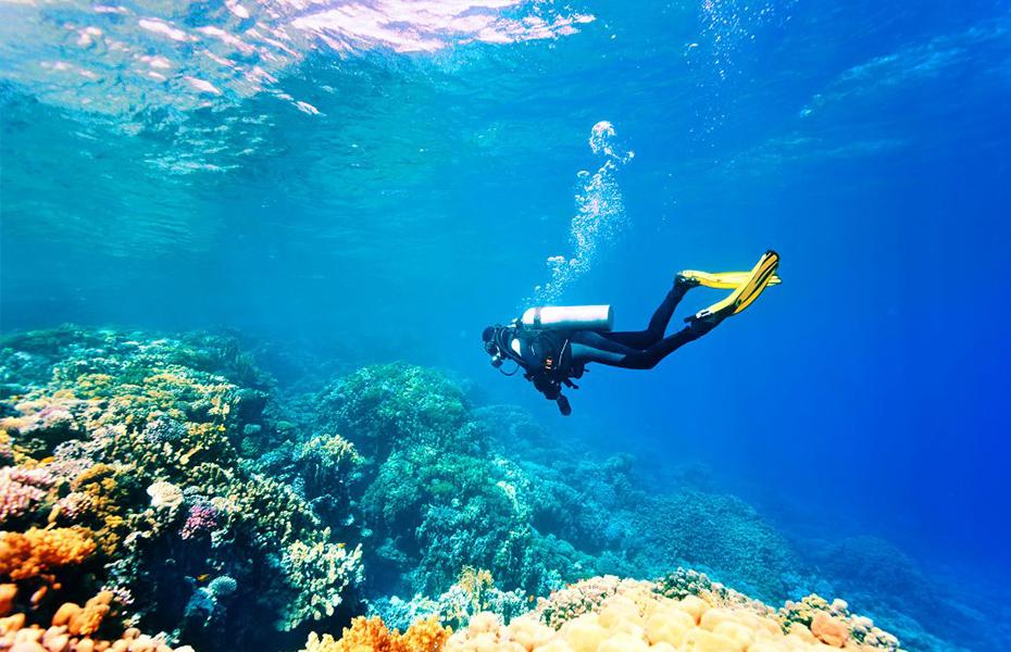 28,9€ από 70€ για Κατάδυση Γνωριμίας Scuba Diving, με Εξοπλισμό, Φωτογράφιση & Snack, από την Καταδυτική Σχολή
